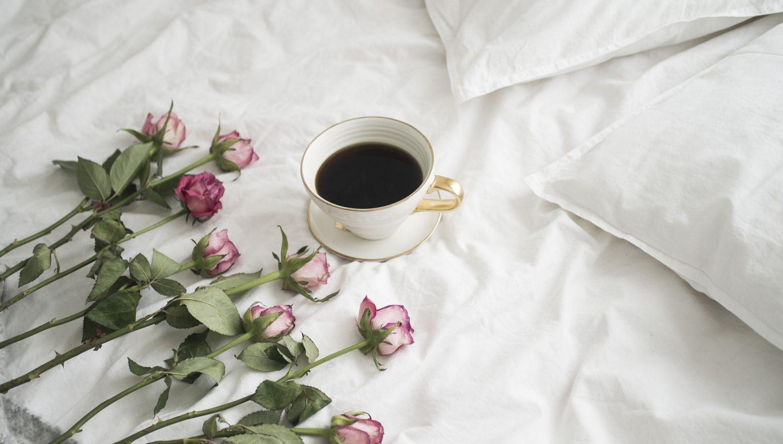 roses-2676639_1920